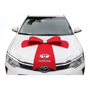 Car Bow Personalised
