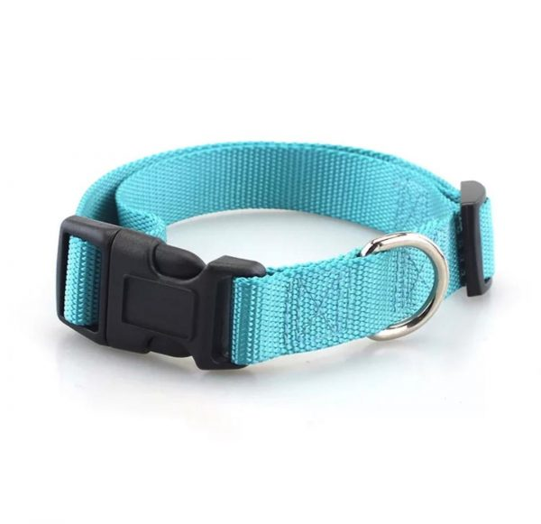 blue pet collars