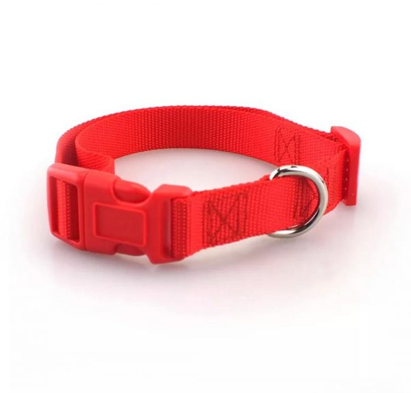 red pet collars